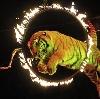 Цирки в Киреевске